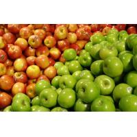 Wholesale Large Crisp Tasty Fresh Green / Red Star Apple For Fruit Supermarket from china suppliers