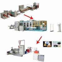 Wholesale Foam Clamshell Plastic Container Production Line , Automatic PS Fast Food Container Machinery from china suppliers