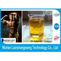 Wholesale USP Methyltestosterone Testosterone steroids powder Bodyuilding CAS 58-18-4 99.5% Purity from china suppliers