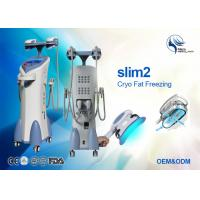 Wholesale Cellulite Reduction Cryolipolysis Machine Fat Freezing Machine With 2 Handles from china suppliers