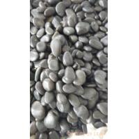 Wholesale Popular&Hot Sales Natural Pebble Stone,High Polished & Polished Black Pebble,White Pebble,Gravel Stone from china suppliers