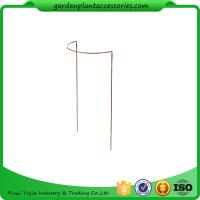 Wholesale Metal Garden Flower Supports / Half Round Plant Supports For Climbing Plants from china suppliers