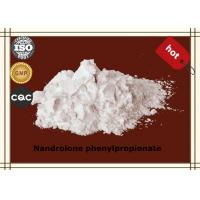Wholesale Bodybuilding Steroid Hormone Powder Nandrolone phenylpropionate CAS62-90-8 from china suppliers