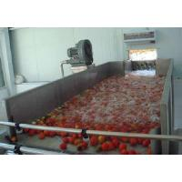 Wholesale Industrialized Fruit And Vegetable Processing Line For Date Washing And Elevator from china suppliers