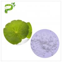 Wholesale Natural Cosmetic Plant Extract Centella Asiatica Leaf Extract For Skin Scars Repairing from china suppliers