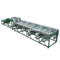 Wholesale Automatic Garlic Grader Machine for Sale from china suppliers