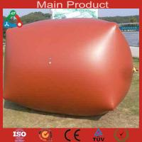 Wholesale Excellent small food waste treatment biogas digester from china suppliers