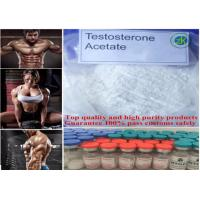 Wholesale Muscle Enhancement Steroids Testosterone Acetate For Increasing Muscles Strength 855-19-6 from china suppliers