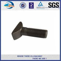 Wholesale High Tensile Q235 Steel Bolts And Nuts With Hot Dip Galvanized / Zinc Plated Surface from china suppliers
