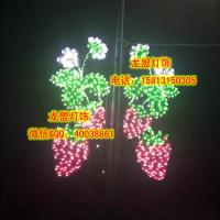 Wholesale fruit decorative light,holiday motif light,christmas light from china suppliers