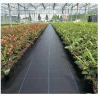 Cheap black plastic woven ground cover