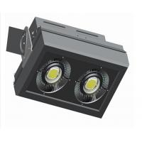 Wholesale 120W LED Tunnel Light 6000 - 68000 LM Meanwell Driver Saa Ul Tuv-Fiona from china suppliers