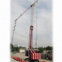 Wholesale Self Erecting Tower Crane with Maximum Lifting Weight of 3T and Balance Weight of 4.4T from china suppliers