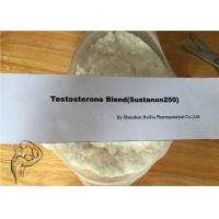 Wholesale Injectable Oral Anabolic Steroids Sustanon 250 Testosterone Blend from china suppliers