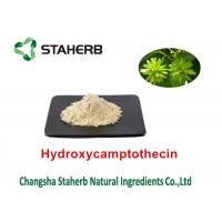 Wholesale Camptothecae Acuminatae Pure Natural Plant Extracts Hydroxycamptothecin 98% from china suppliers