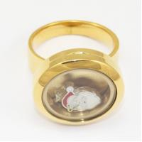 Wholesale 316L Stainless Steel Floating Charm Memory Living Locket Ring TGLR011 from china suppliers