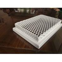 Transparent Perforated Metal Mesh Ceiling Decorative with White Powder