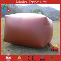 Wholesale Hot sale high efficiency household biogas plant from china suppliers