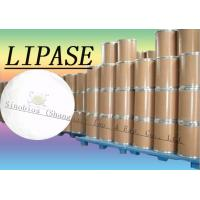 Quality 20000u/g Lipase Enzyme Supplement For Bread / Flour / Noodles Szym-LIP20BA for sale