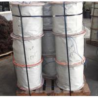 Wholesale 304 7x7 Stainless Steel Wire Rope , AISI / BS / ASTM / JIS from china suppliers