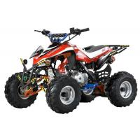 Wholesale Sell 110CC Newest/Popular ATV/Quads from china suppliers