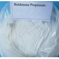 Wholesale White Boldenone Powder Boldenone Propionate CAS 106505-90-2 for Bodybuilding from china suppliers