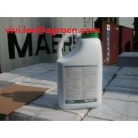 Wholesale Malathin 90%TC/liquid/Bangladesh Market hot  insecticides from china suppliers