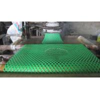 Wholesale HDPE Hexagonal hole mesh (HIGH QUALITY & DIRECT FACTORY ISO 9001) from china suppliers