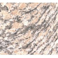Wholesale Tiger skin yellow granite from china suppliers