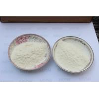 Wholesale Professional Chondroitin Sulfate Shark / Chondroitin Sulfate Powder High Safety from china suppliers