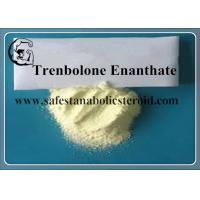 Wholesale CAS 10161-33-8 Trenbolone Steroid Trenbolone Enanthate / Parabola from china suppliers
