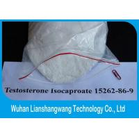 Wholesale GMP Effective Testosterone Anabolic Steroid Raw Powder Test Isocaproate CAS 15262-86-9 from china suppliers