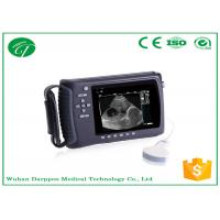 Wholesale Linear / Convex Probe Vet Ultrasound Diagnostic Equipment For Ovine , Bovine , Equine from china suppliers
