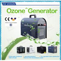 Wholesale Restaurant hotel ozone machine 6g for sterilization indoor air purifier from china suppliers