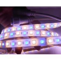 Wholesale Multi Color RGBW LED Strip Light High Power Outdoor Led Strip Lighting from china suppliers