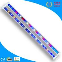 Wholesale 22W Magic Patent Waterproof DIY LED Grow Light Bar (CDL-ZHFS-22W) from china suppliers