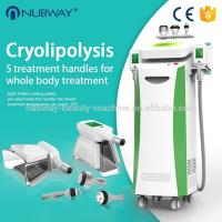 Wholesale 5 treatment handle cryo + rf + cavitation weight loss fat freeze cryolipolysis body slimming machine from china suppliers