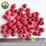 Sell Freeze Dried Raspberries Powder