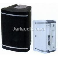 Wholesale Public Address In Wall Stereo Speakers , 2-way Molded Speaker from china suppliers