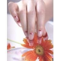 Wholesale PS-114 Nail Poster,Nail Art,Nail Picture from china suppliers