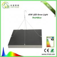 Quality Energy Saving Waterproof LED Plant Grow Lights / Hydroponic LED Grow Lights 3W - 120W for sale