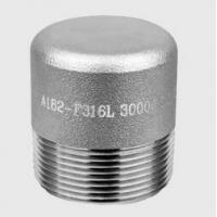 Wholesale High Pressure Forged Steel Fittings Thread Plug NPT SH3410 HG21634 from china suppliers