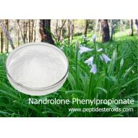 Wholesale Durabolin Raw Nandrolone Phenylpropionate Raw Steroid White Crystalline Powder from china suppliers