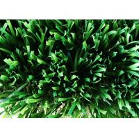 Wholesale W Shape Home Artificial Grass PE & PP Monofilament Yarn For Leisure Lawn from china suppliers