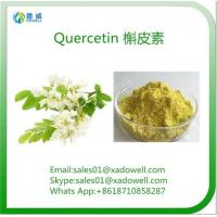 Wholesale Sophora Japonica Extract Quercetin CAS No: 6151-25-3 from china suppliers