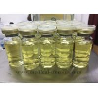 Wholesale Steroids Cycle Testosterone & Masteron For Young men Bodybuilding from china suppliers