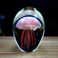 Wholesale 2013 creative  Jellyfish night light from china suppliers