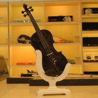 Quality New Patented Super Light Superb Tone Powerful Volume 100% carbon fiber violin for sale