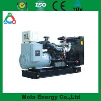 Wholesale 20KW biogas generators with new type from china suppliers