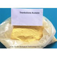 Wholesale 10161-34-9  Anabolic Steroid Powder Finaplix Trenbolone Acetate for weight loss from china suppliers